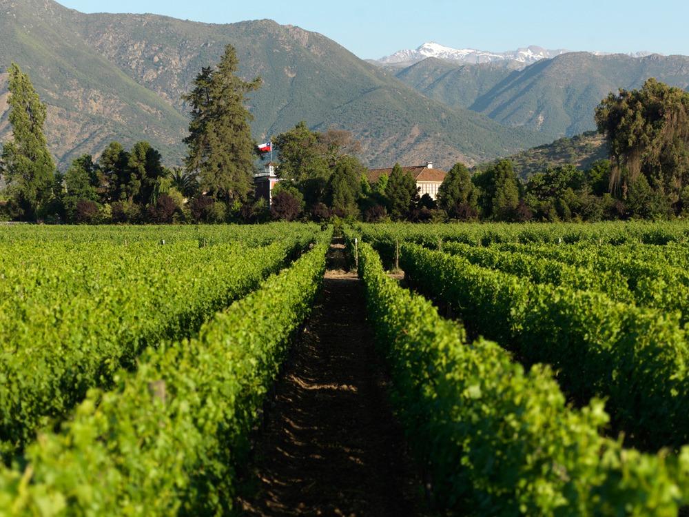 T Torreon de Paredes Landscape